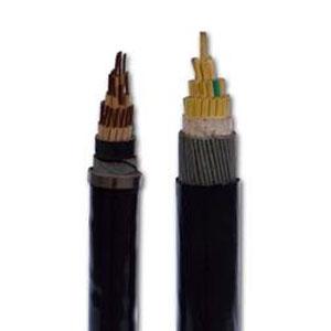 聚乙烯绝缘控制电缆
